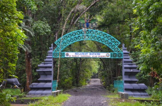 Alas purwo Banyuwangi
