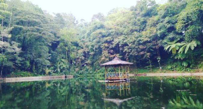 Rowo Bayu Songgon Banyuwangi