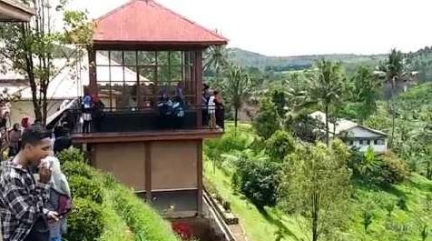 villa bejong songgon banyuwangi