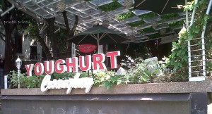 Cisangkuy Yoghurt Surapati Bandung
