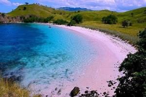 Tempat Wisata Pantai Pink Lombok Timur