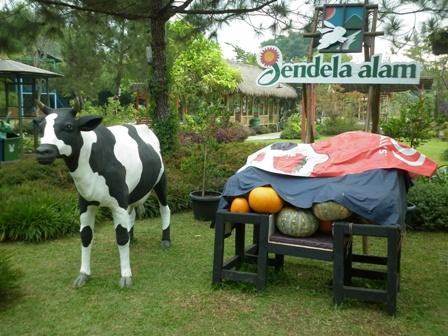 Tempat Wisata Edukasi/Pendidikan Jendela Alam Lembang