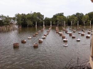 Mangrove Park Pekalongan