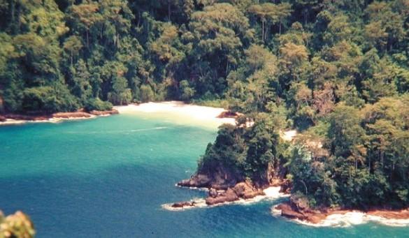 Tempat Wisata Pantai Bandealit Jember